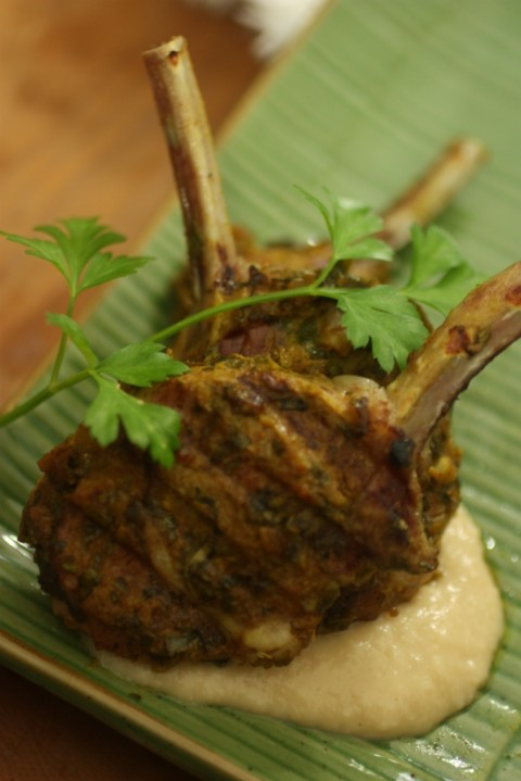 Chermoula Lamb Cutlets on white bean puree